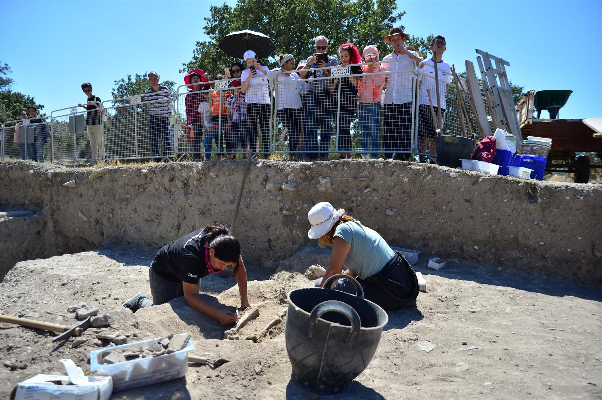 There could be surprising findings in Troy: Excavation head